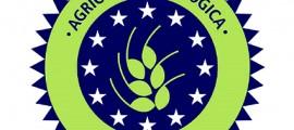 agricoltura_biologica_cina_agricoltura_biologica_cinese_alimentazione_biologica_cina_city_farm_1
