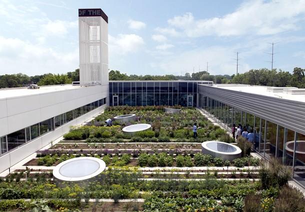 agricoltura urbana, agricoltura urbana sostenibilità, sostenibilità agricoltura urbana, agrioltura tetti