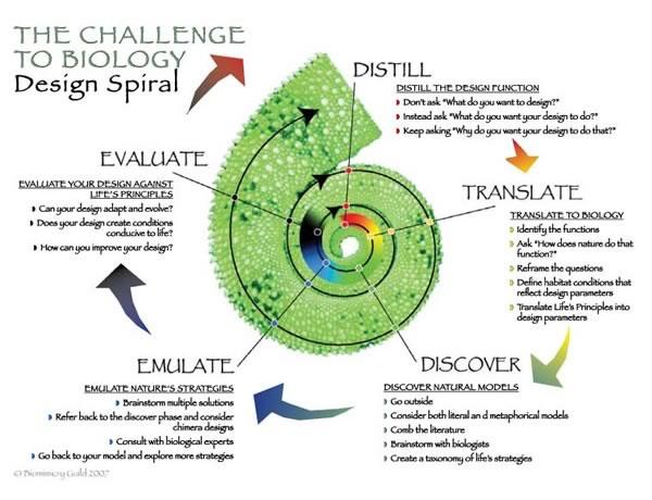 biomimesi, spirale biomimesi, janine benyus