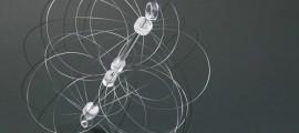 biomimesi, biomimesi design, biomimesi natura