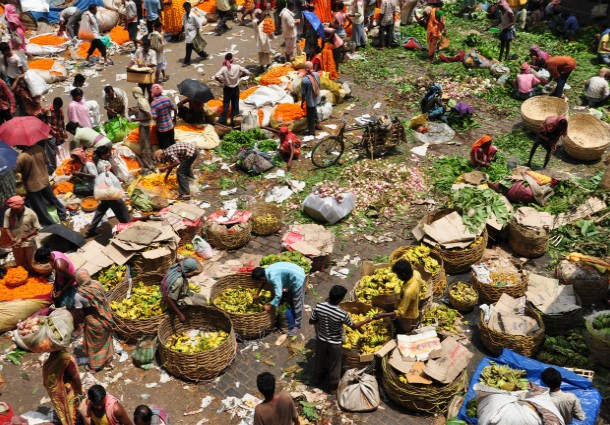 agricoltura biologica, agricoltura urbana