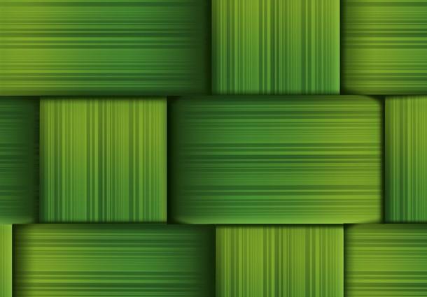 green business, padova social busienss