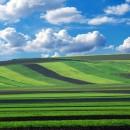 nanospugne, nanospugne agricoltura, agricoltura nanospugne, agricoltura intelligente, nsf