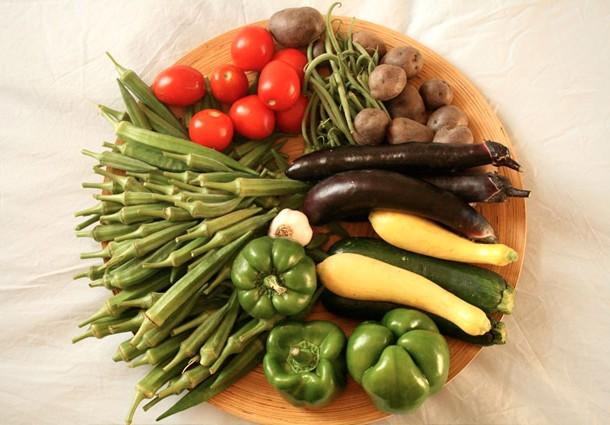 cibo_30_agricoltura_ambiente_2