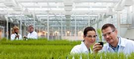 centro-ricerche-in-agricoltura