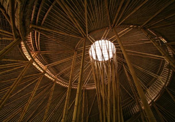 interno-bamboo
