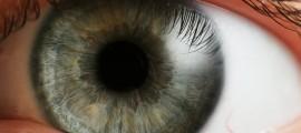 stampante, occhio umano, biomimesi