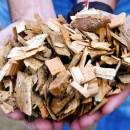 biomassa, italia biomasse, biomasse