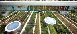 crowdfunding-agricoltura-urbana-1