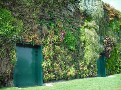 giardino verticale, rozzano, guinnes dei primati, guinnes world record