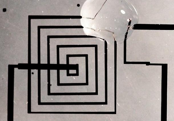 elettronica transitoria, chip biodegradabile, fiorenzo omenetto