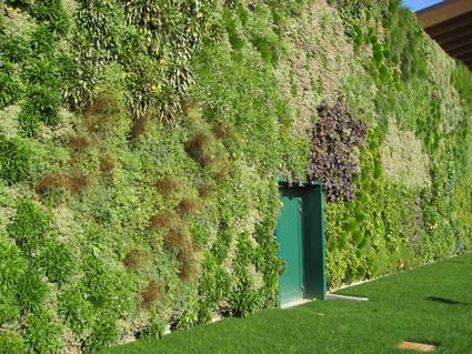 Giardino verticale da guinnes dei primati a rozzano di milano for Giardini verticali milano