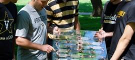 spinaci, fotovoltaico