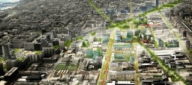 smart cities, bioedilzia