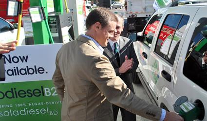 solazyme, solazyme alghe, biodiesel alghe in vendita
