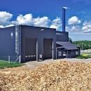 biomassa, energia da biomasa, silvana castelli