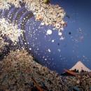 ocean pacific garbage