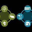 innovazione prodotto, innovazione sostenibile