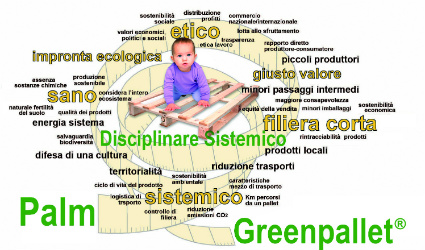 palm, green pallet, pallet ecologici