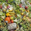 food waste, conservazione cibo, tecnologia conservazione cibo