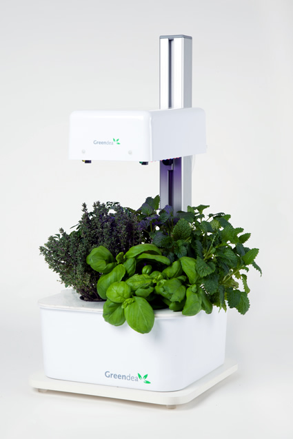 greendea, agricoltura idroponica, coltivazione idroponica greendea