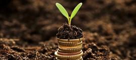 bioeconomia-economia-sostenibile-03