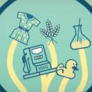 bioeconomia-webinar-giordano-mancini