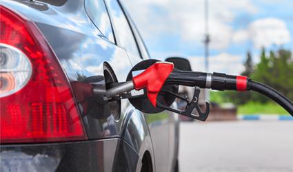 Bioeconomia Guerra Carburante