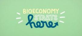 bio-industry-porto-marghera
