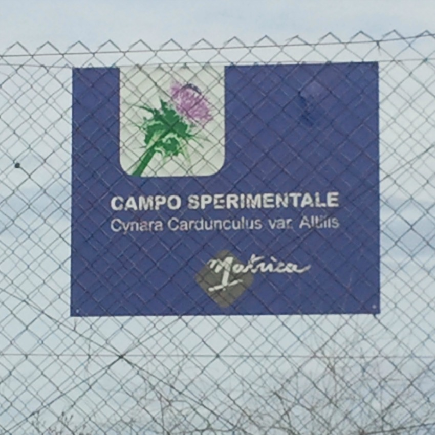 flagship di Matrìca, Bioplastica