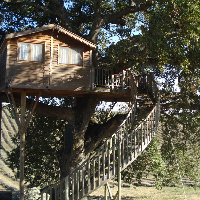 Ecoturismo, Casa sull'Albero