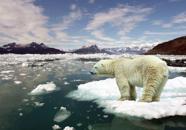 Riscaldamento Globale, Rischi del Pianeta