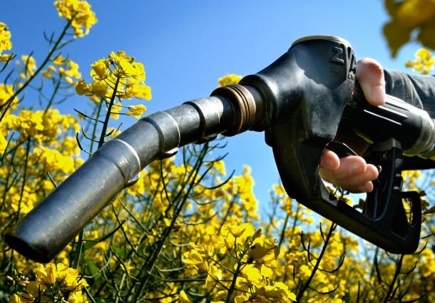 Biocombustibili da Rifiuti