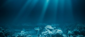 Startup americana: Okeanos Technologies