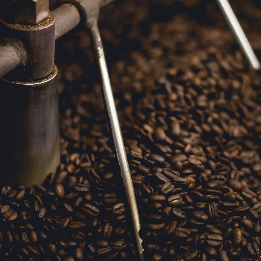 I fondi di caffè: materiale a bassissimo costo con moltissime applicazioni