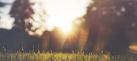 Ov/Sun 2.0: Piattaforma per il Fotovoltaico