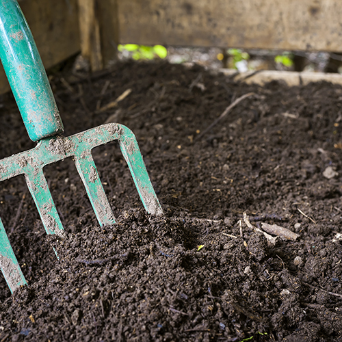 In Italia la raccolta dell'umido cresce e fa risparmiare