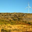 Eolico: la carta per il rinnovamento sostenibile per guardare al futuro