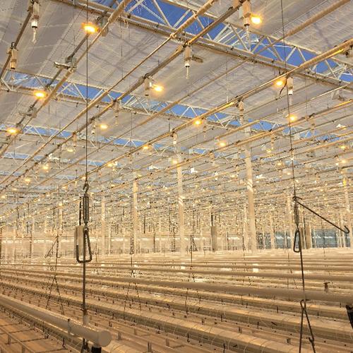 In Russia l'energia per 20.000 luci nella serra di Belgorod viene da AB
