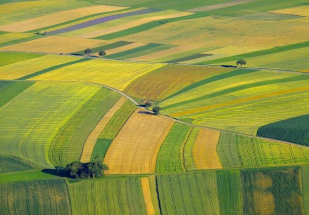 Arriva 'Efesto' per Risparmiare su Acqua e Pesticidi