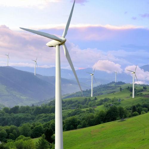 Effetto EXPO: Cresce l'Attenzione alla Sostenibilità