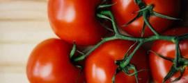 Ecommerce e Logistica Online per Agricoltura Bio