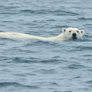 Progetto Arca: lo studio del Sistema Climatico e dei suoi Cambiamenti