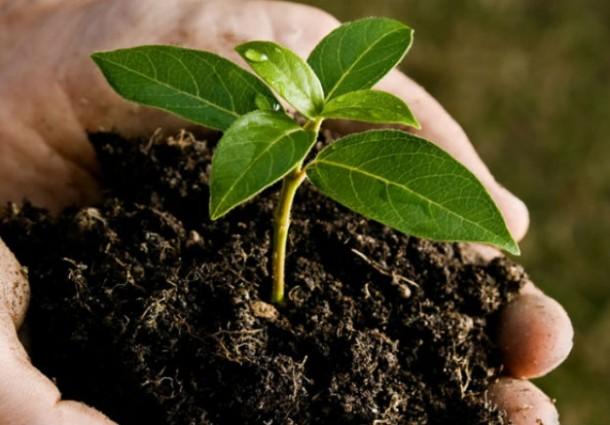 Assobioplastiche: crescita a due cifre nel 2016