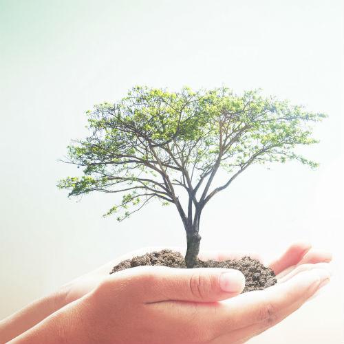 BioPiattaformaLab: si discute del progetto cap-core con la cittadinanza