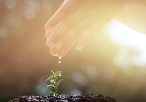 Interventi-sul-territorio-nel-segno-della-sostenibilit-Cap-Holding-approva-il-piano-investimenti