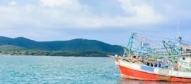 La-pesca-elettrica-diventa-illegale-in-Europa-dal-2021-Bloom-vince-la-battaglia