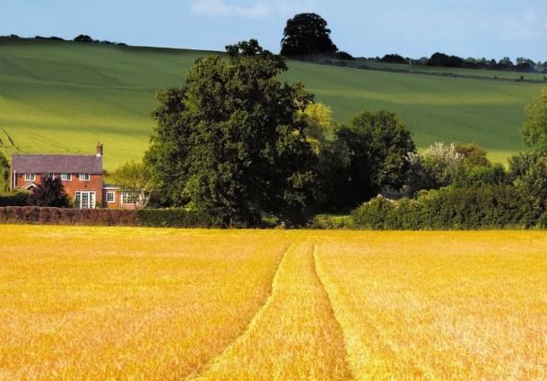 Sostenibilit-ambientale-e-resilienza-climatica-la-Politica-Agricola-Comune-PAC-e-le-politiche-agrico