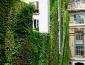 giardini_verticali_patrick_blanc_giardino_verticale_giardiniere_verticale_giardino_verticale_8